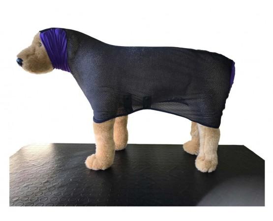 dry dog coat