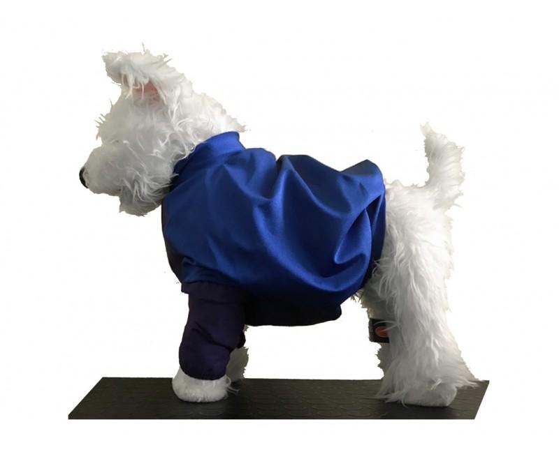 giacca di protezione dalla urina per Cavalier King