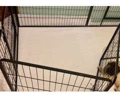 giò pad nel recinto per cuccioli