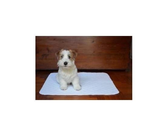 giò pad  traversina lavabile ideale per educare i cuccioli